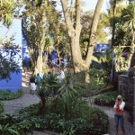 Blue House Gardens