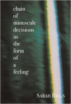 Chain of Minuscule Decisions in the Form of a Feeling by Sarah Riggs