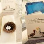 Decor: Bird Nest and Gift Book