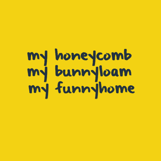my honeycomb. my bunnyloam. my funnyhome