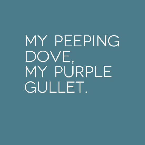 My peeping dove, my purple gullet.